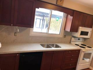 white countertop wood kitchen